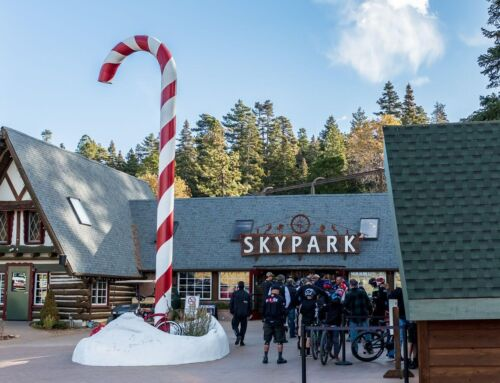 SKYPARK AT SANTA'S VILLAGE CELEBRATES 66TH SUMMER WITH VINTAGE VIBES AND ACTION ADVENTURE