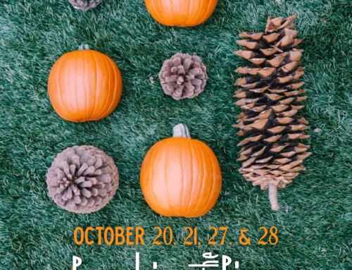 Pumpkins in the Pines: A Fall Family Festival