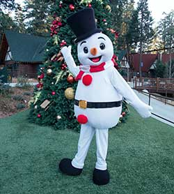 Northwoods Characters - Frosty the Snowman - SkyPark at Santa