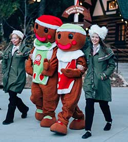 Snap & Crumbles - The Gingerbread Men - Northwoods Characters - SkyPark at Santa's Village