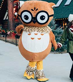 Professor Owlbert Hootsworth - Northwoods Characters - SkyPark at Santa's Village